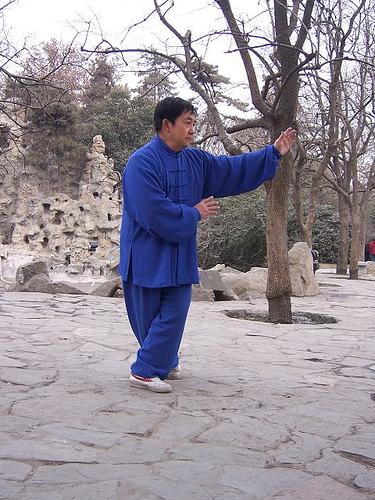 Zhang Zhuan Körperhaltung